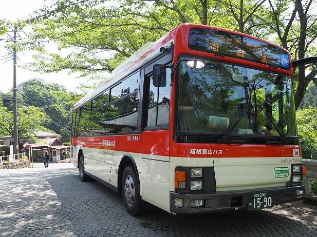 P5295250