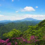 大室山 (丹沢) ツツジと新緑を愛でる山行 ~ 西丹沢ビジターセンタ 周回 日帰り登山 ~
